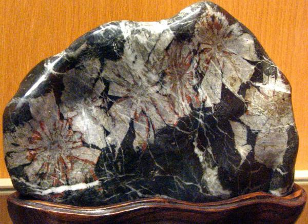 Хризантемиум на подставке